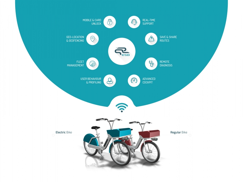 ESB_bike_sharing_infograph